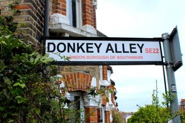 DonkeyAlley.seg11