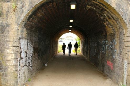 Seg16.M1tunnel