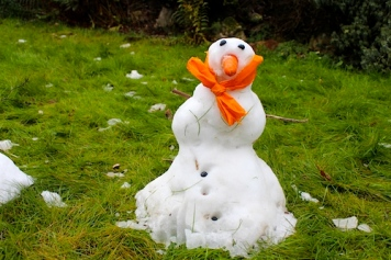 Snowman.MossyHill