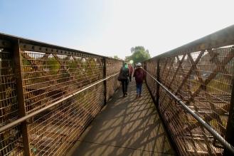 walk22-bridge